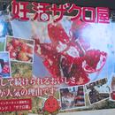 妊活ザクロ®︎でHappyに!!4/22(日)「第3回こうのとりフォーラム」の画像